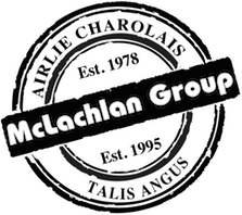 group_brand